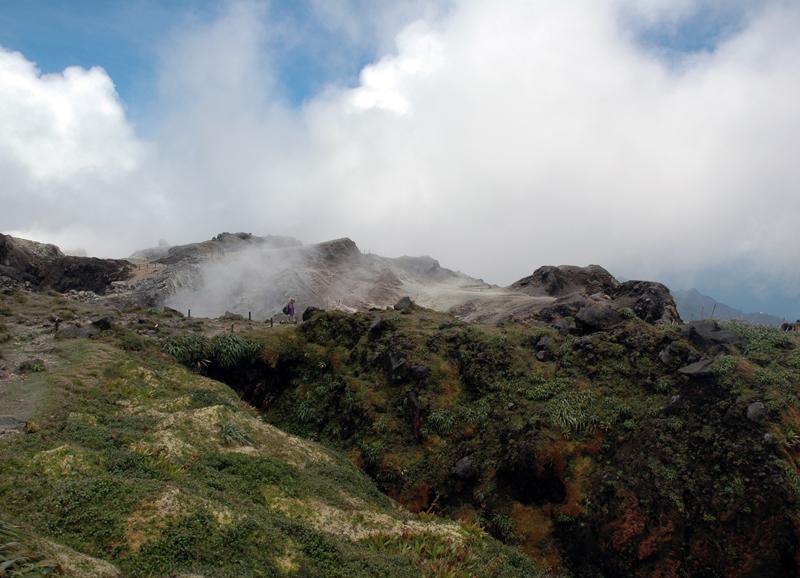 Gwada2010-1203.jpg