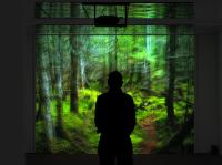 still from ''Wald' video installation by Max Philipp Schmid photo © M. P. Schmid, 2007