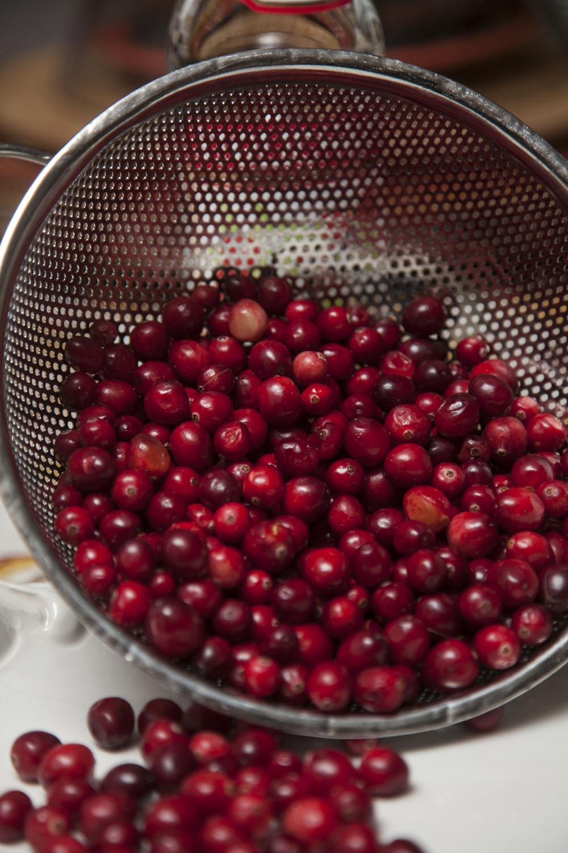 Cranberry Cupcakes 10.JPG