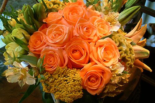 peach-roses.jpg