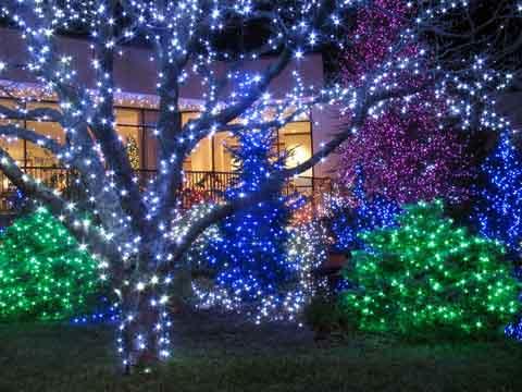 outdoor-christmas-lights-21.jpg