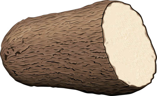 What does a yam look like? This is a yam.