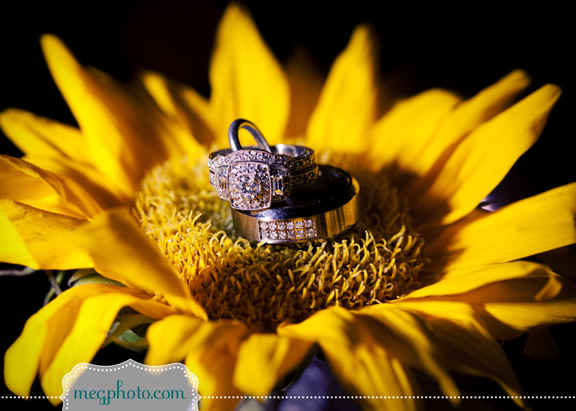 The other great thing about sunflowers is that your wedding bands can fit perfectly on their cushiony  centers.
