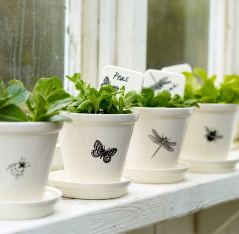 Matching white pots with butterfly, dragonfly, bee, and ladybug, all in a row and perfect for your peas and other smaller kitchen garden plants. And if you can't find them, make them yourself with some plain terracotta pots and enamel paint and some decals.