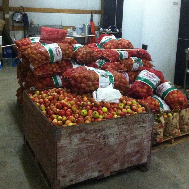 Our stack of locally picked fruit waiting for the press this weekend.