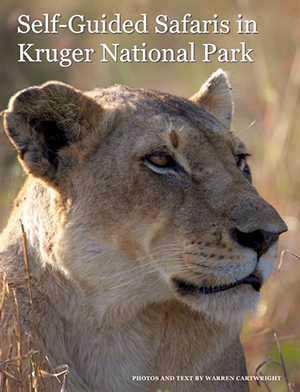 The cover image for  Self-Guided Safaris in Kruger National Park .