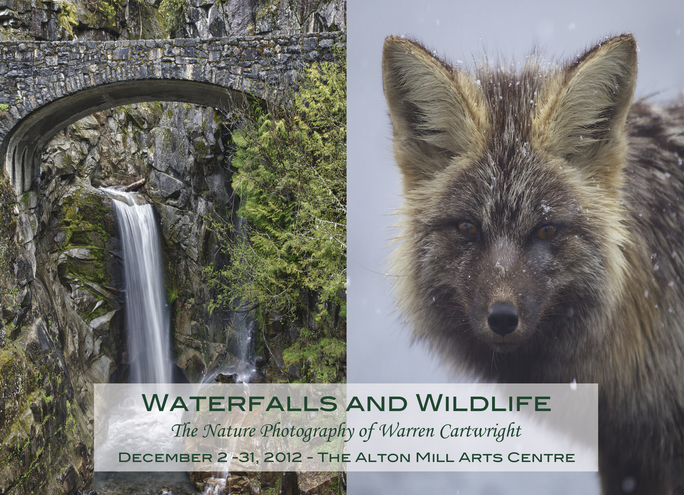 Front of the post card for the event  Waterfalls and Wildlife: The Nature Photography of Warren Cartwright.