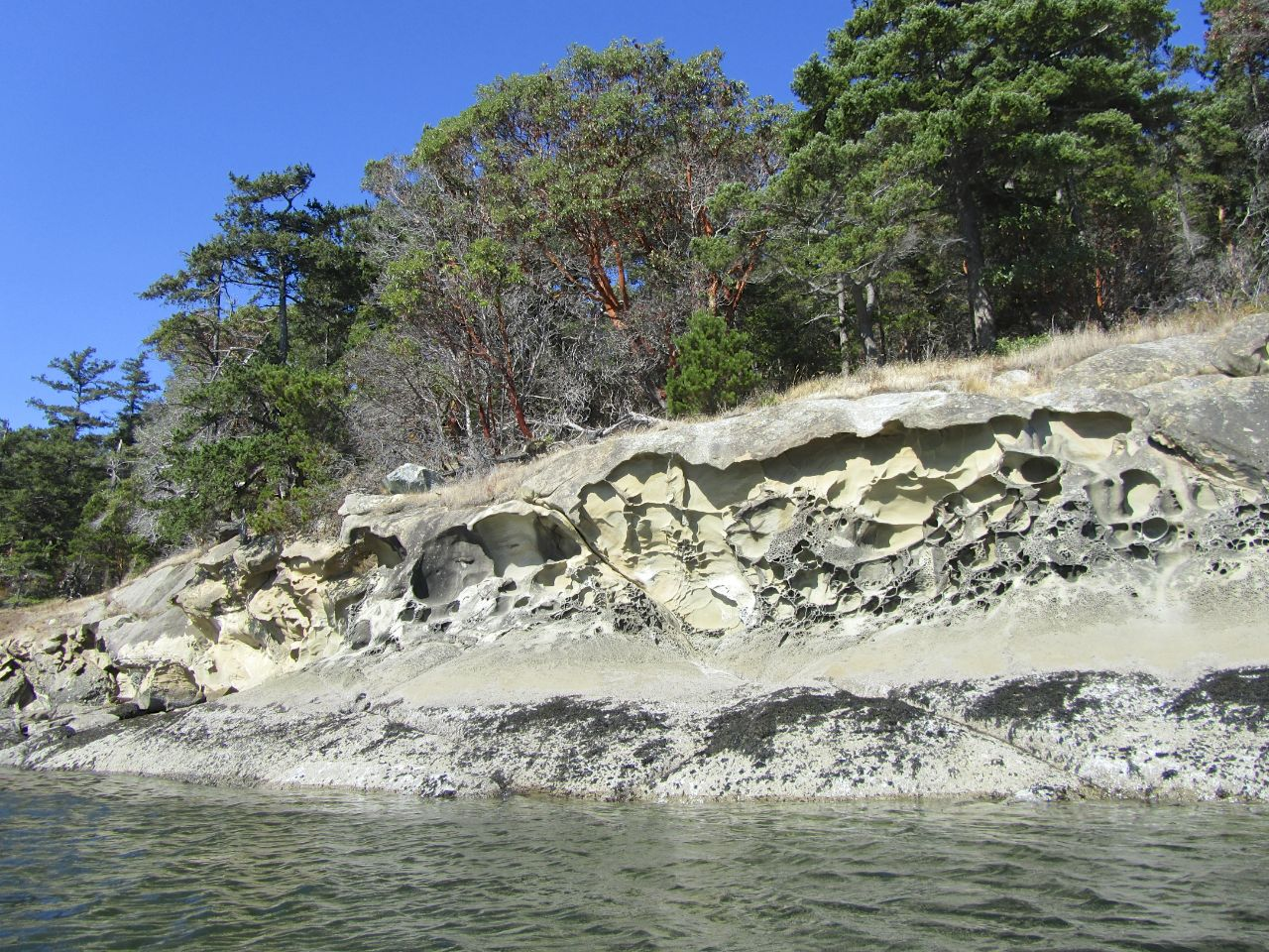 Thesceneryon Sucia (or all the Gulf Islands for that matter) is amazing. The eroded sandstone and arbutus tress make for spectacular sites as you tour the islands.