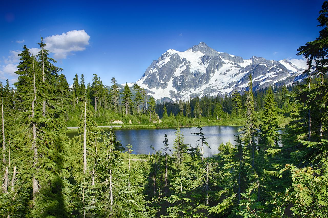 Near the ski hill at Mount Baker, this small mountain lake sits nestled in the trees.