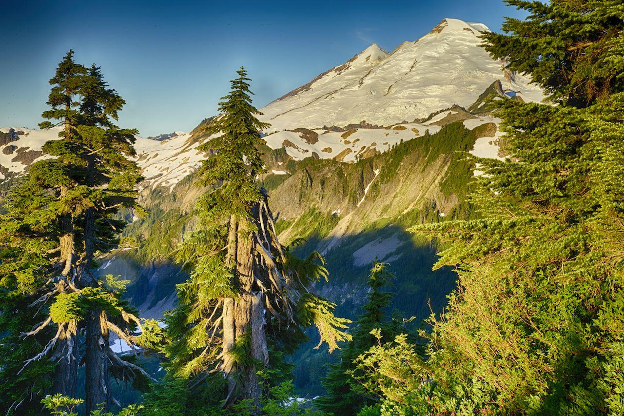 The early morning sun lighting up Mount Baker.