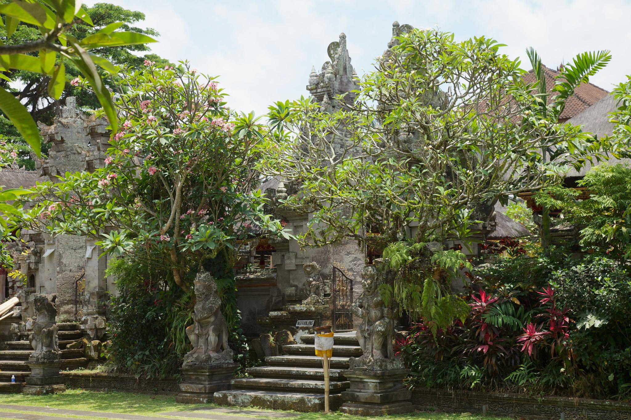 Bali  36232.jpg