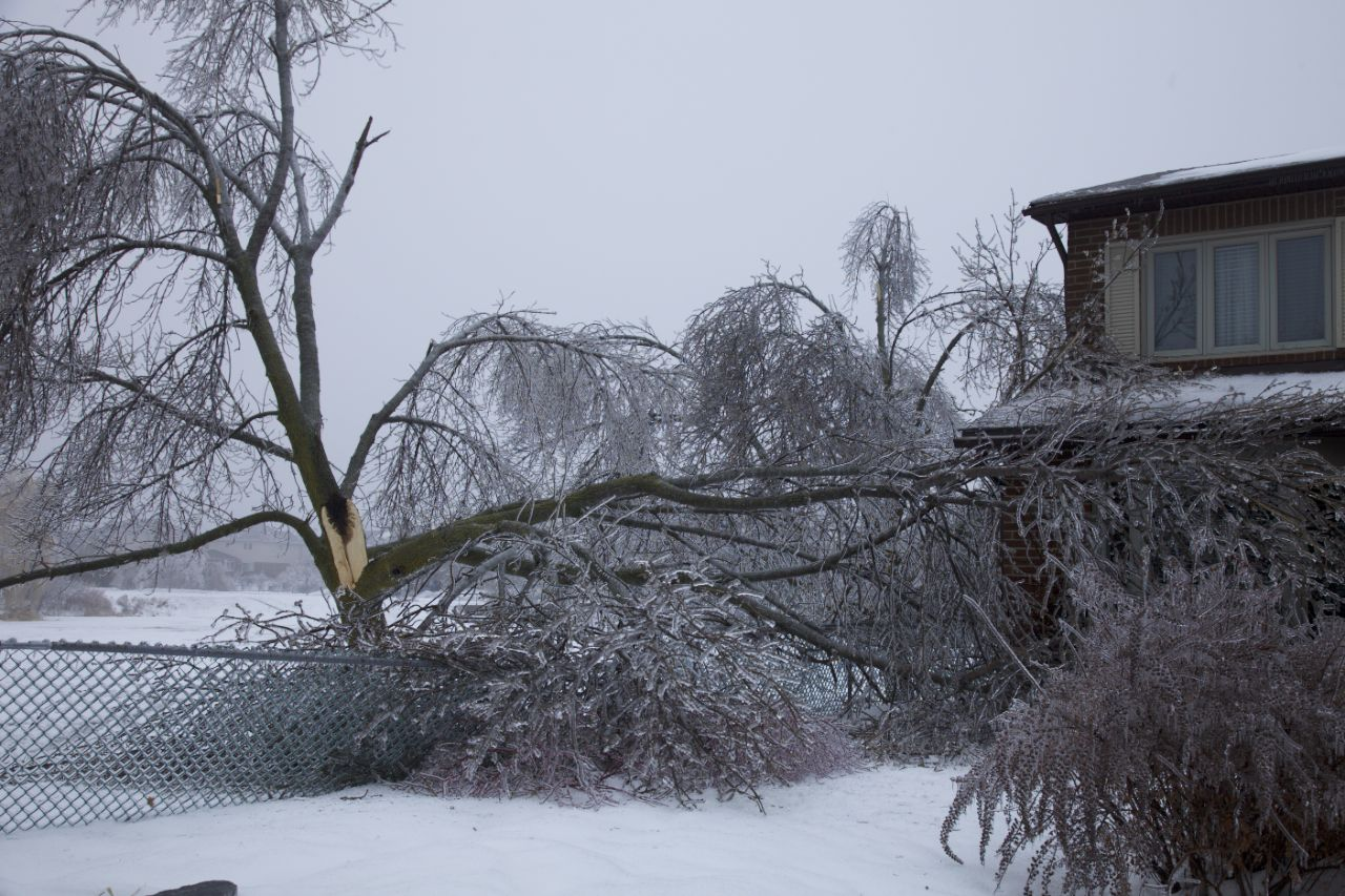 This house appears to have been very lucky, as the huge branch off the willow tree barely avoids doing major damage.