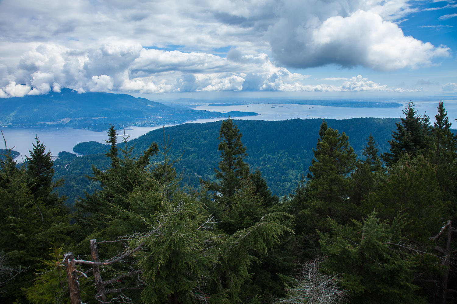 A slightly different perspective on the view from Mount Gardner.