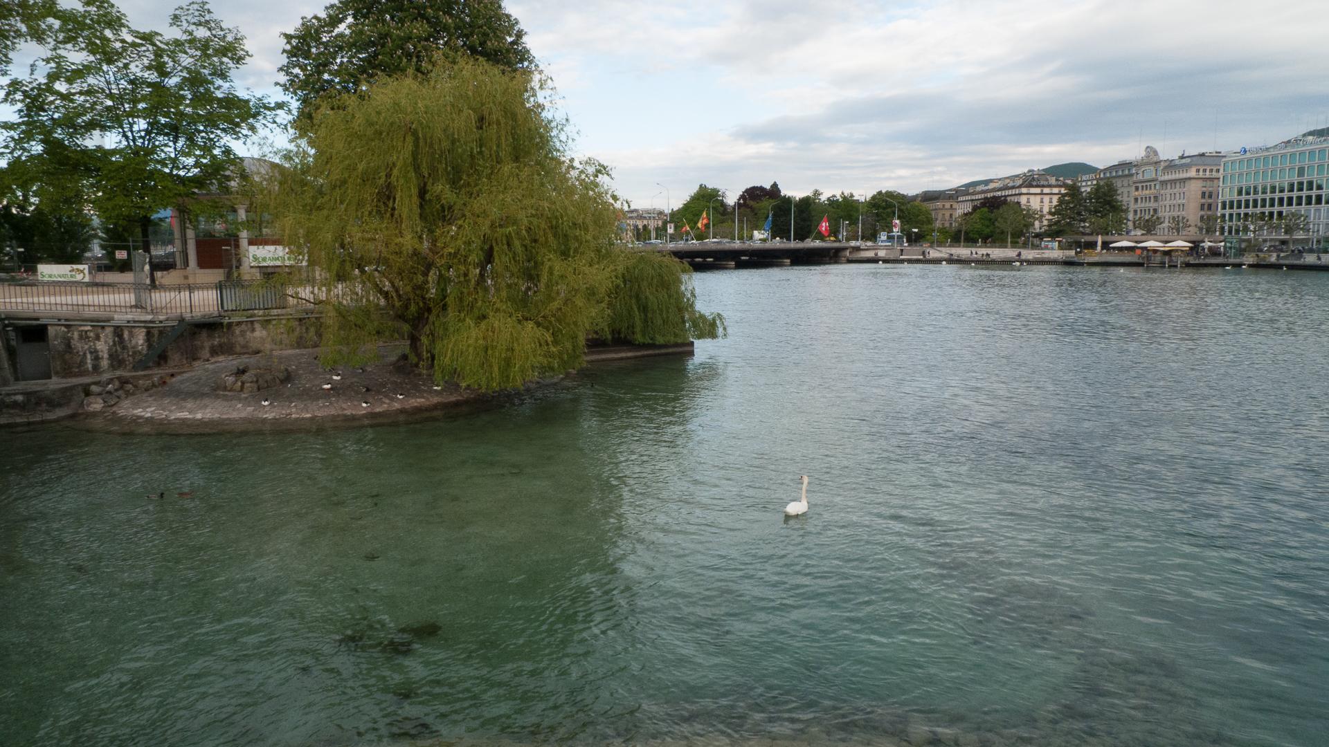 Geneva-11.jpg