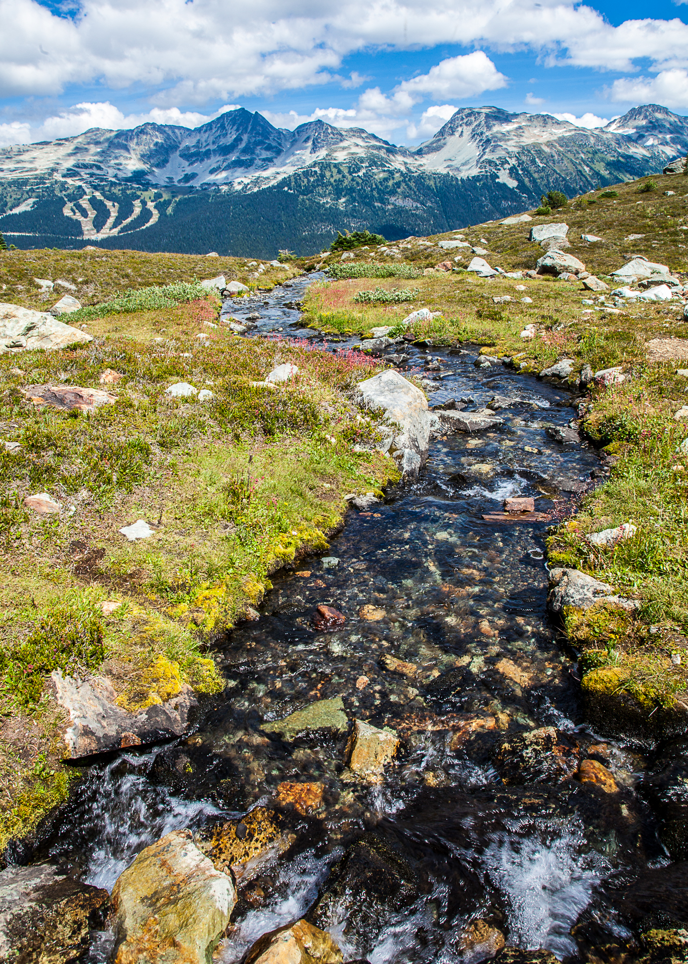 A small stream, flowing down off the mountain.