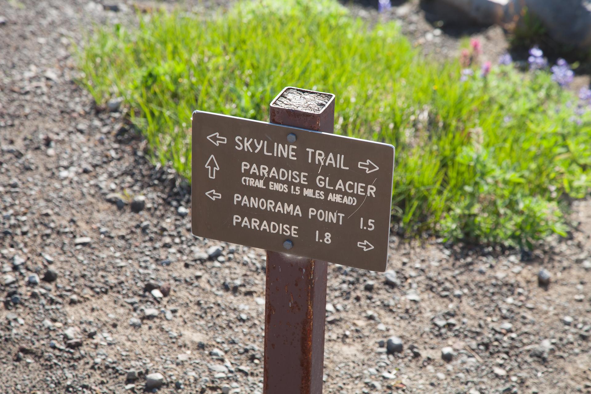 Mount Rainier_Sat-50.jpg