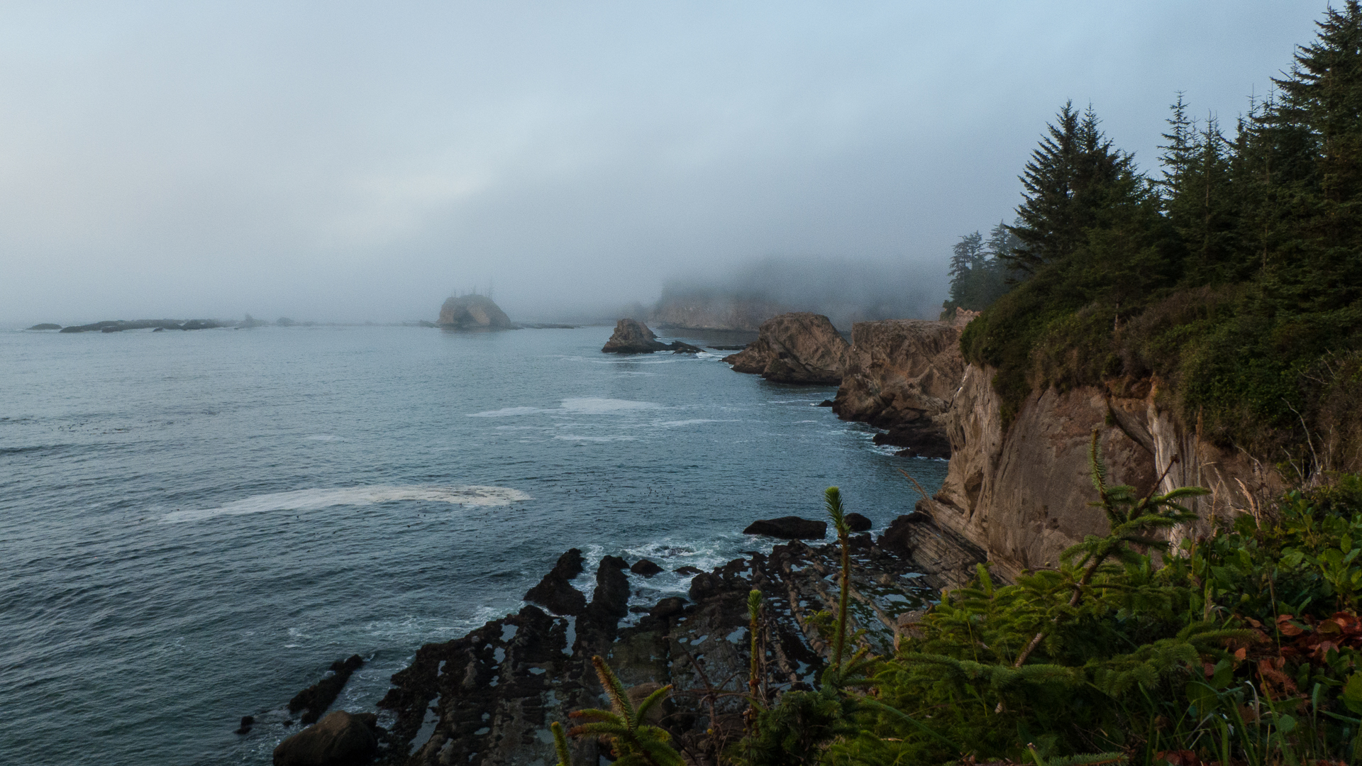 The cool morning brought with it fog, giving us a pretty typical view of the Oregon Coast.