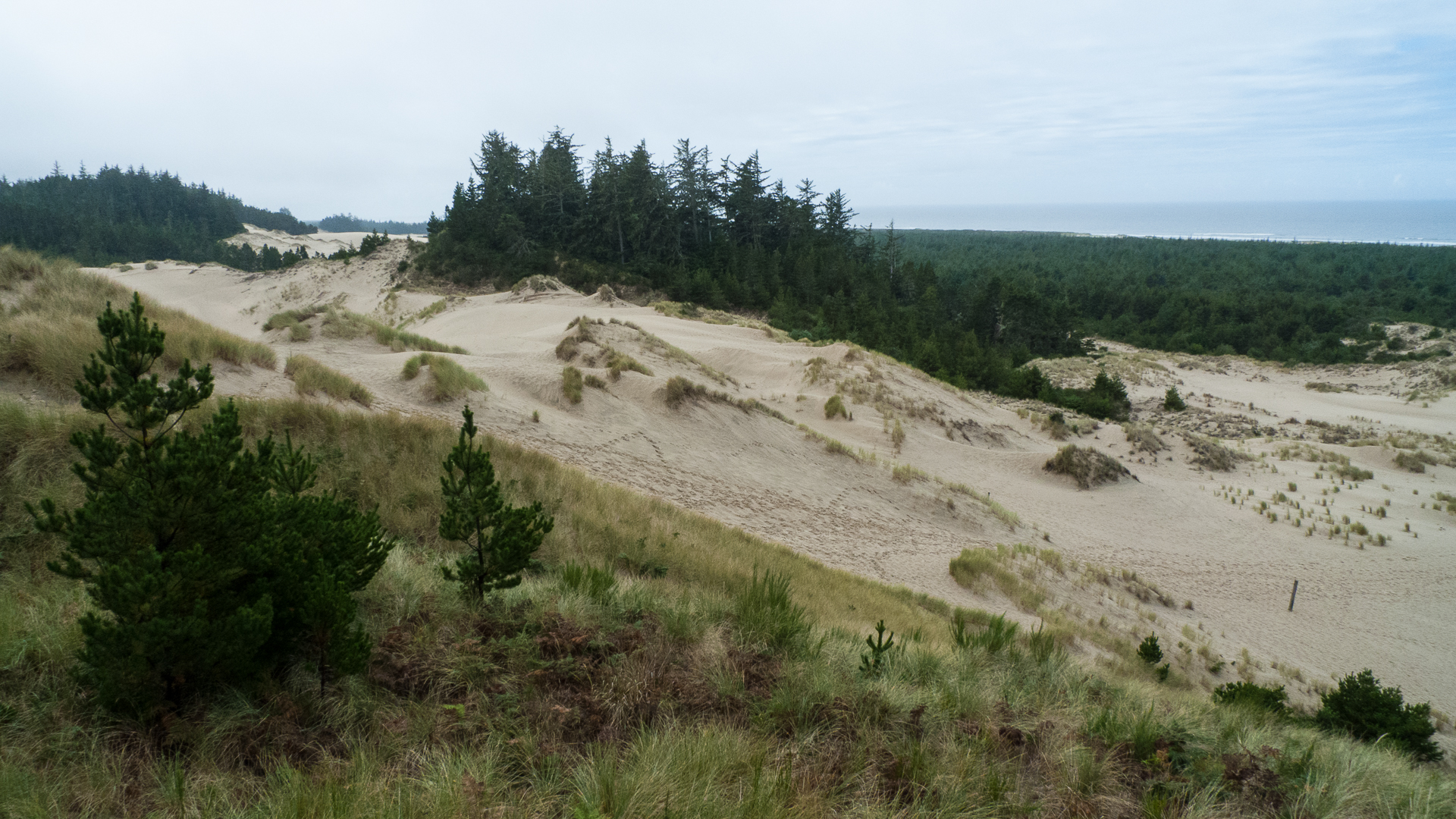 Some of the crazy sand dunes.