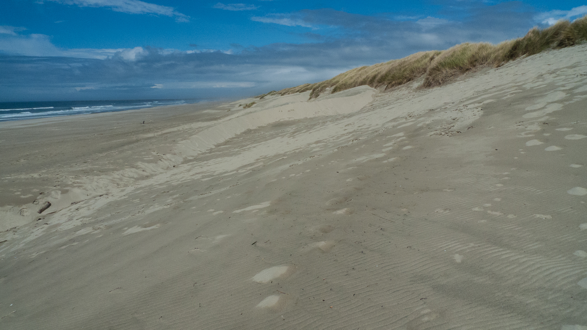 The beach is massive, and the dunes seem to go on forever.
