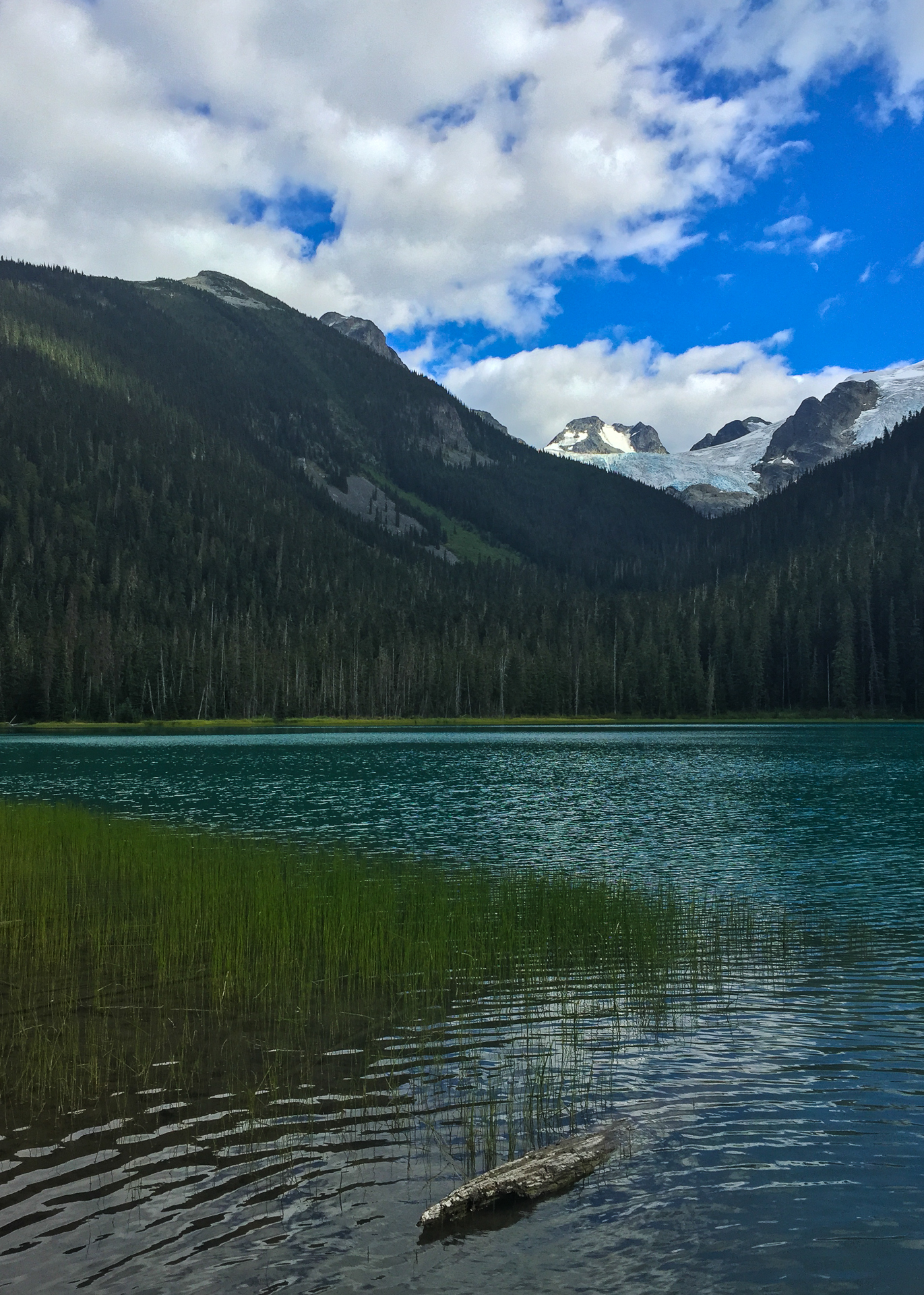 Lower Joffre Lake and the Glacier