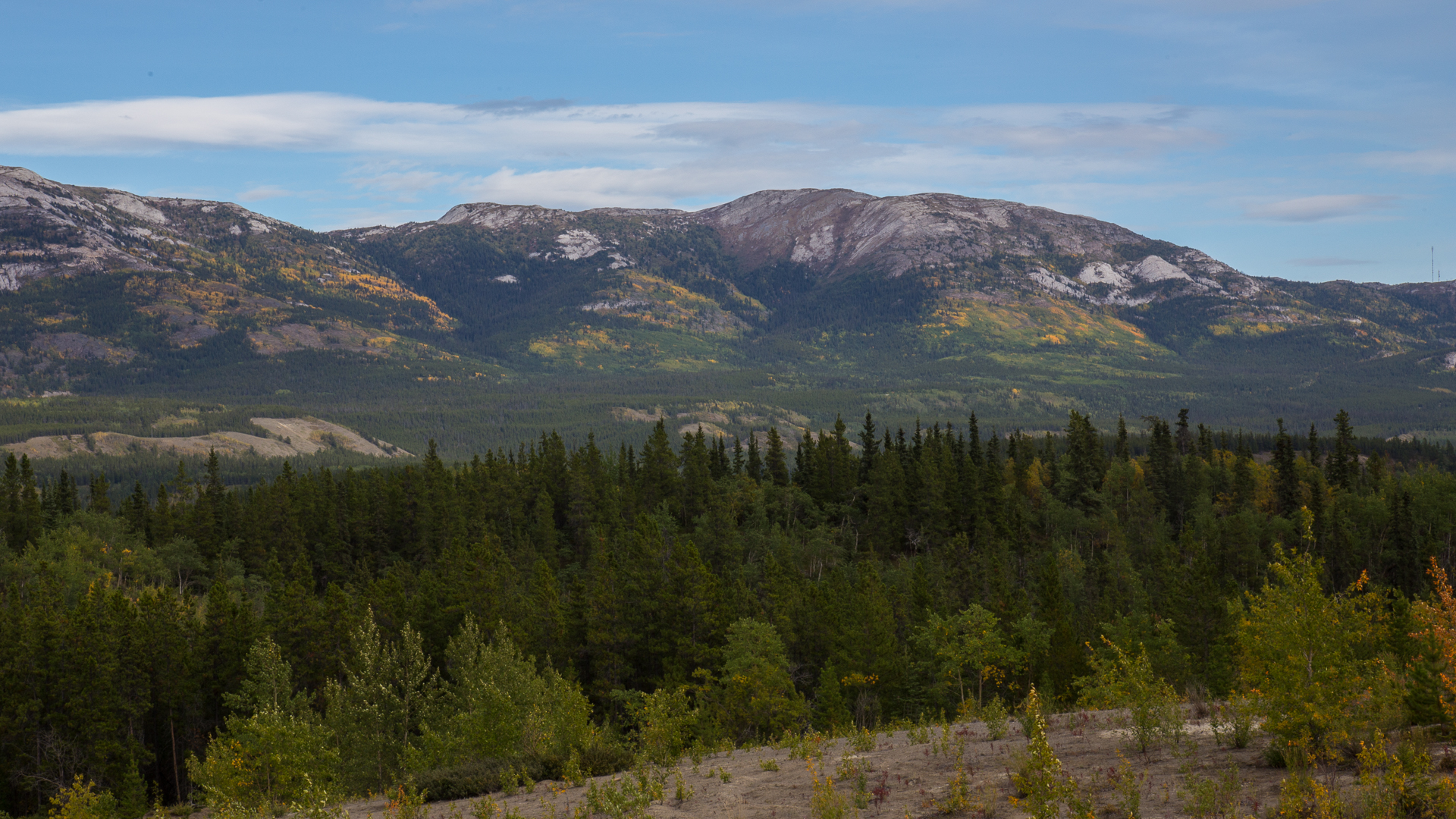 Colour on the hills just outside of Whitehorse.