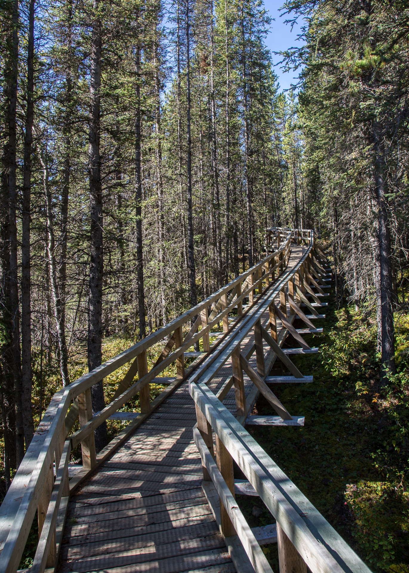 Rancheria Falls boardwalk