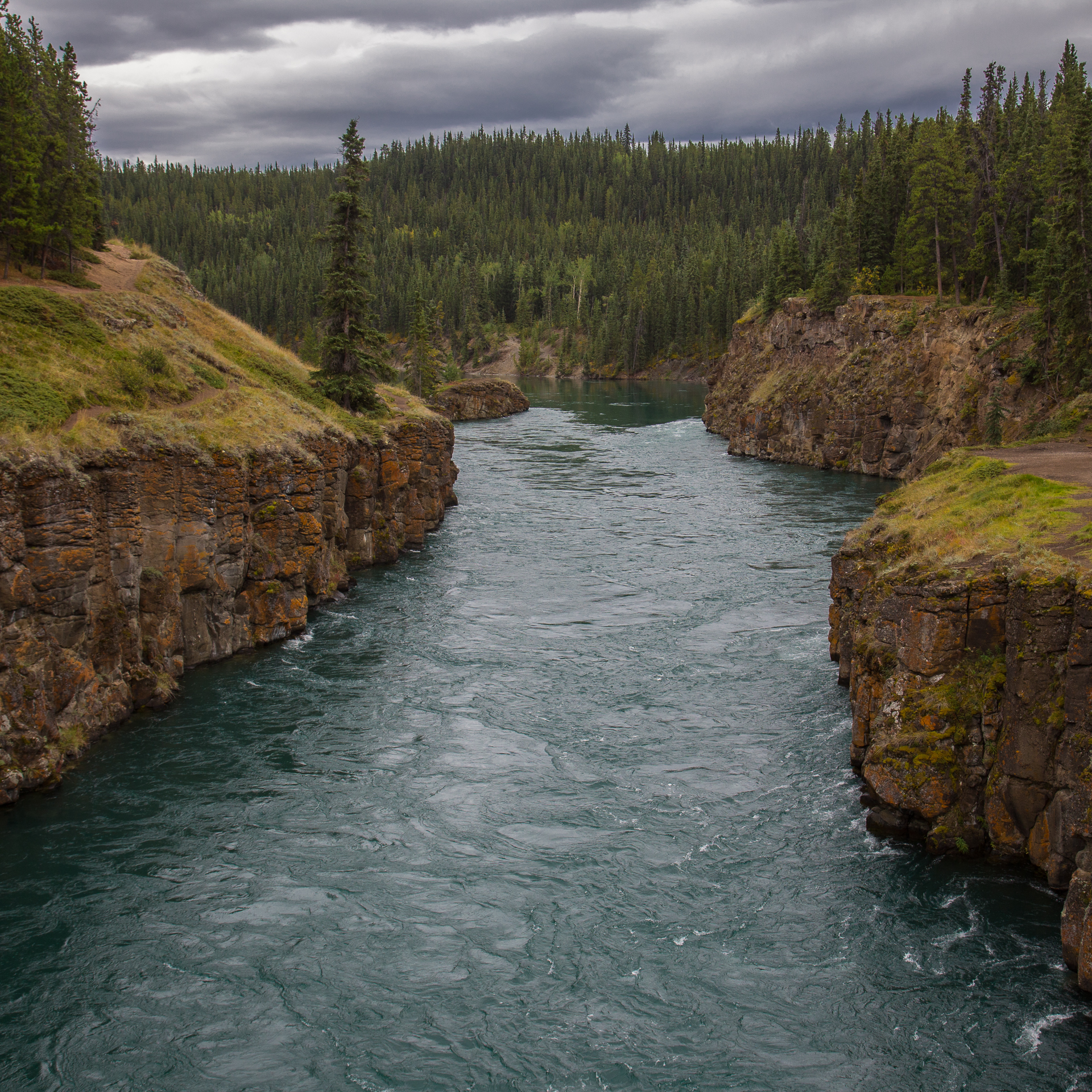 Yukon D7-6.jpg