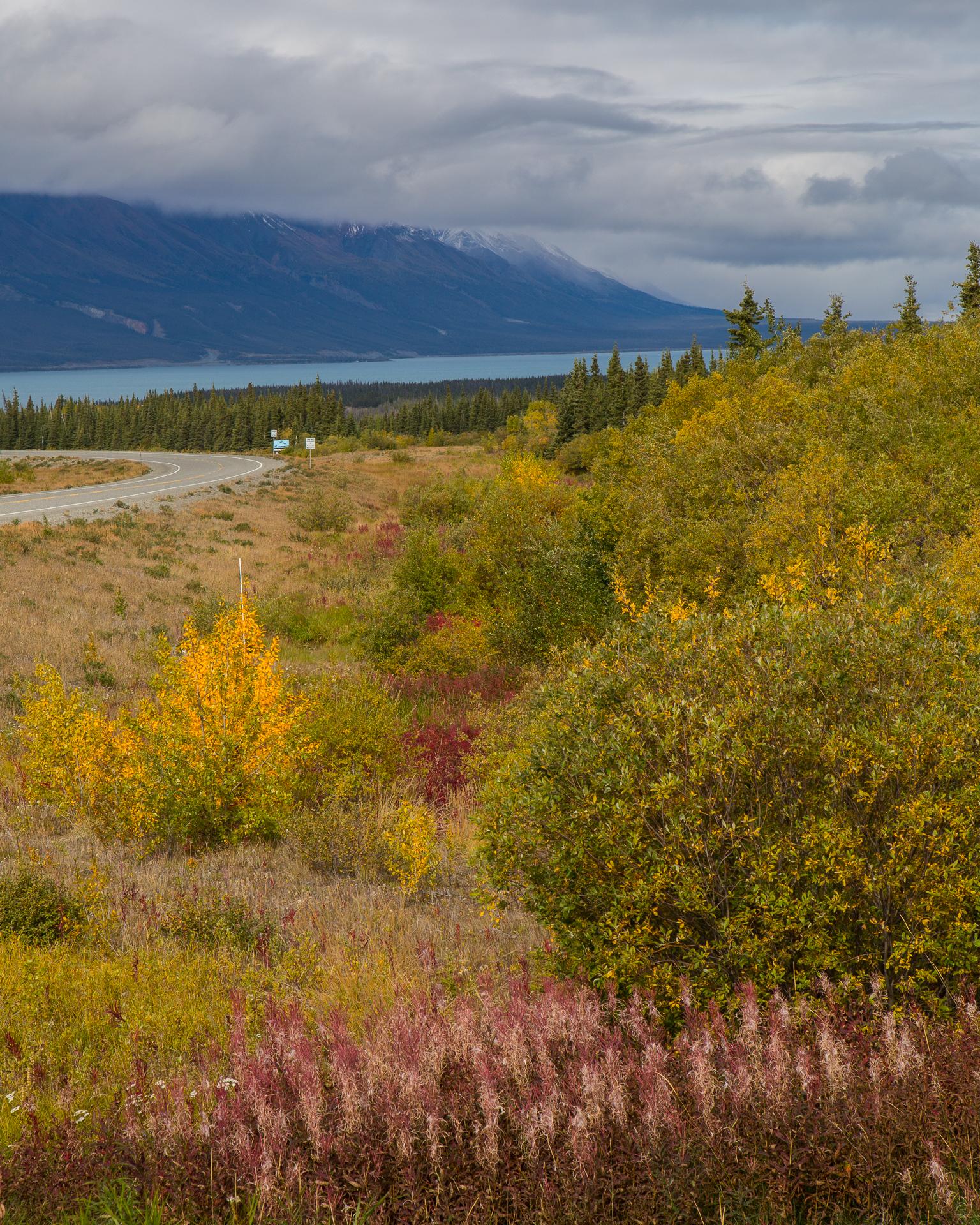 Beautiful view down onto Kluane Lake.