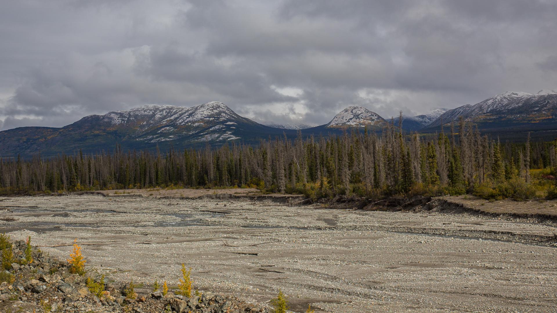 Yukon D9-15.jpg