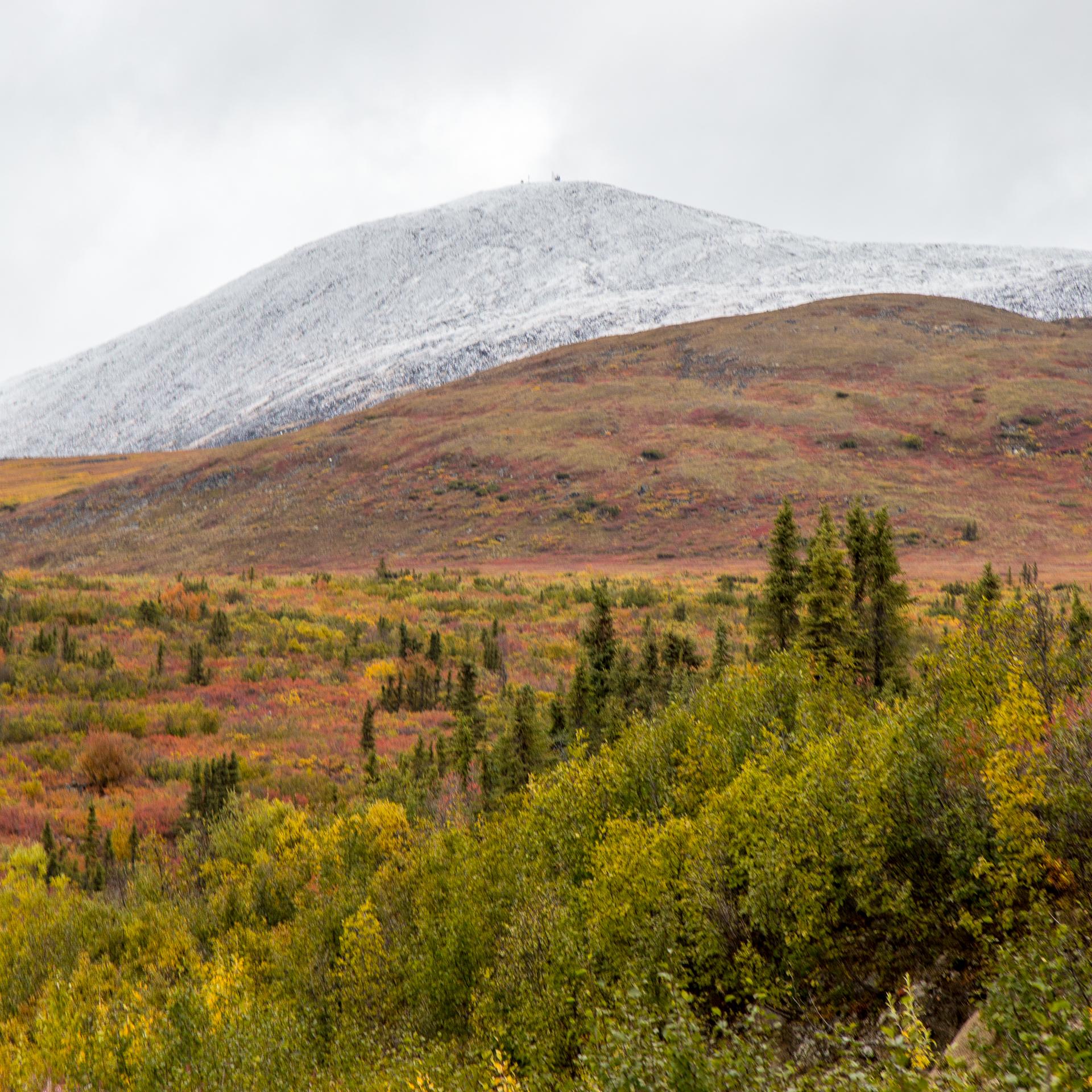 Yukon D10-8.jpg