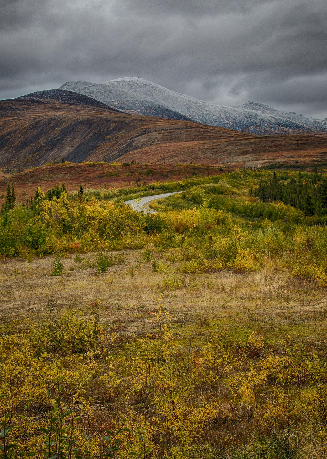 Yukon D10-15.jpg