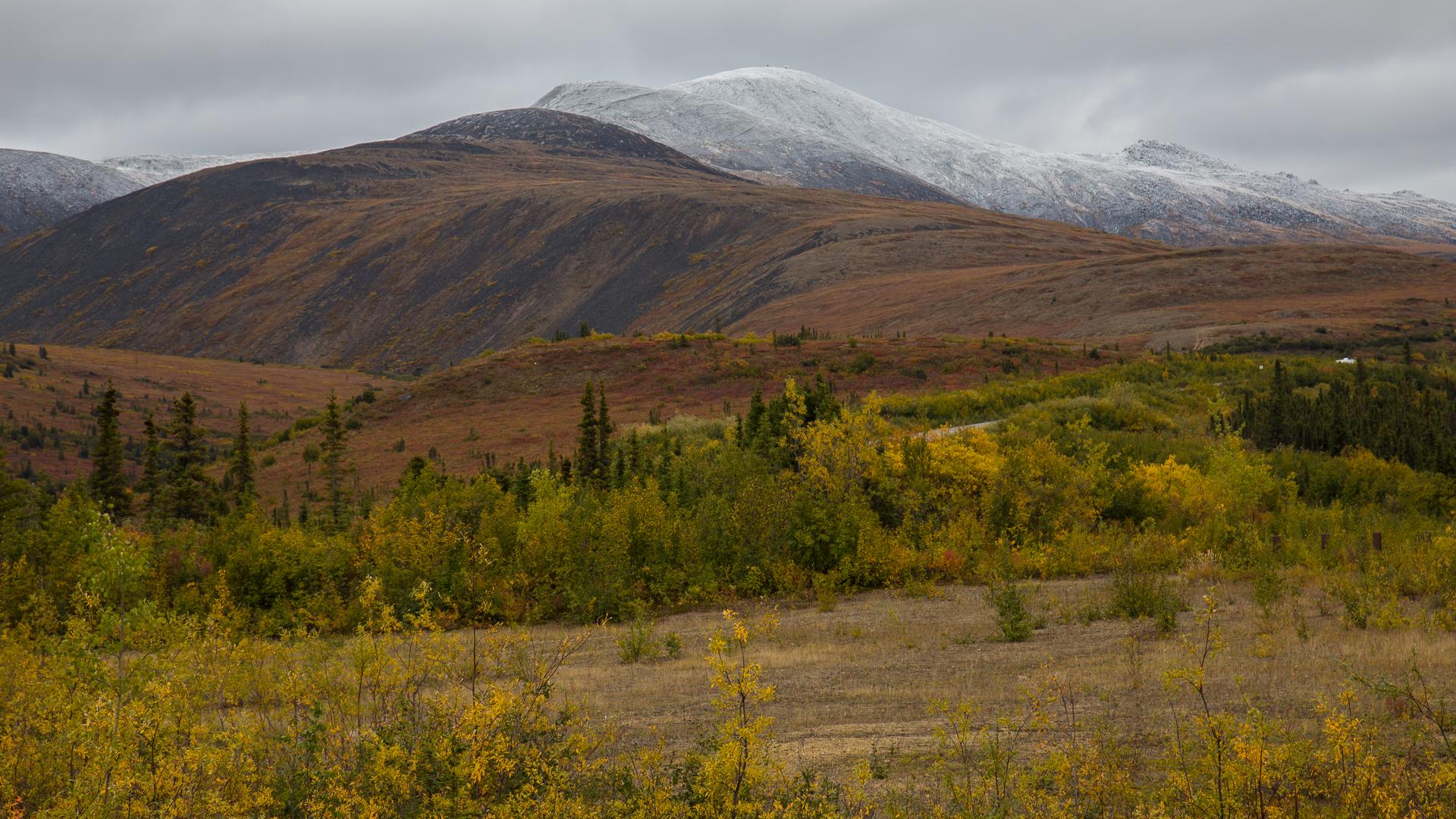 Yukon D10-16.jpg