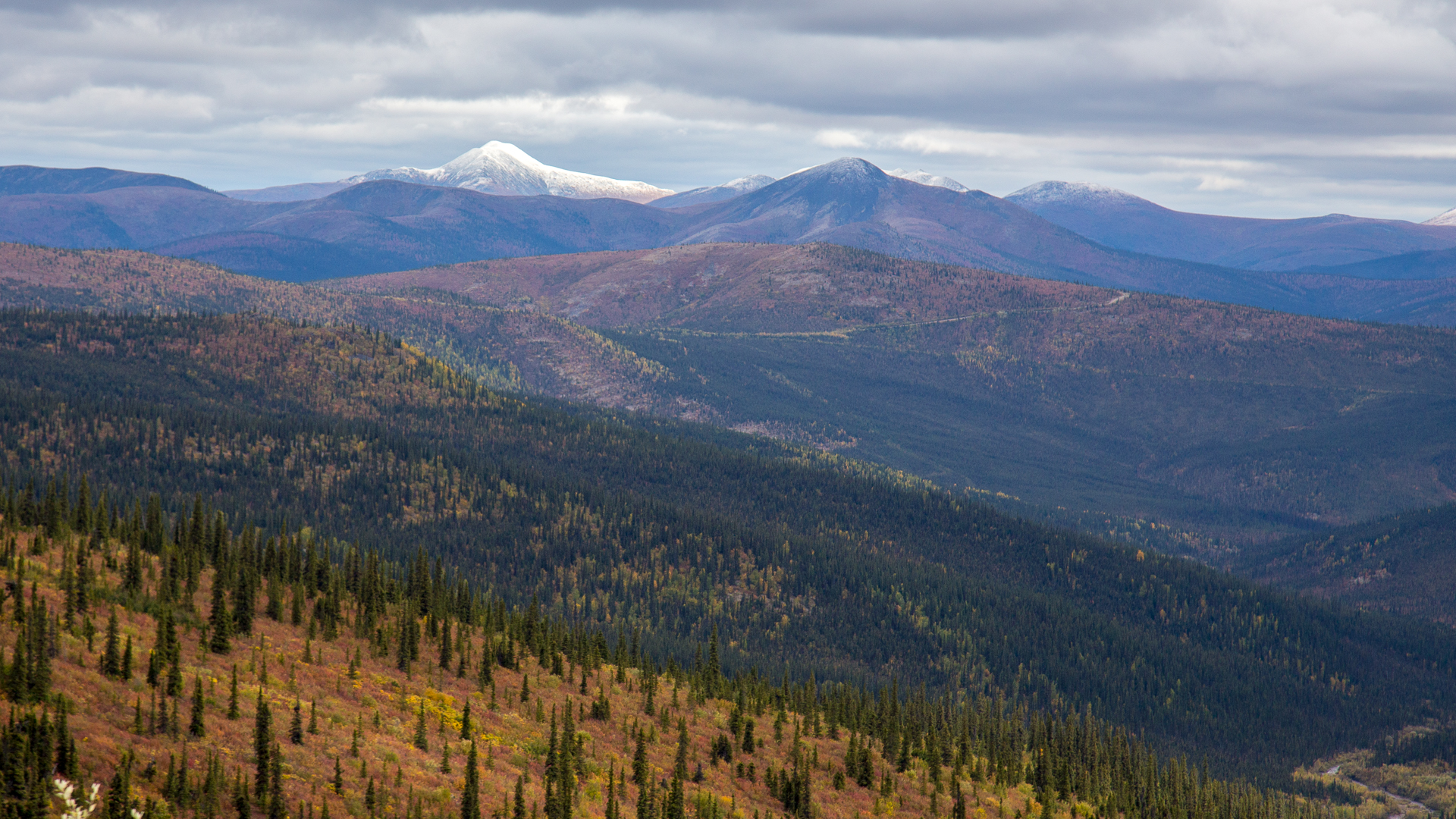 Yukon D10-40.jpg