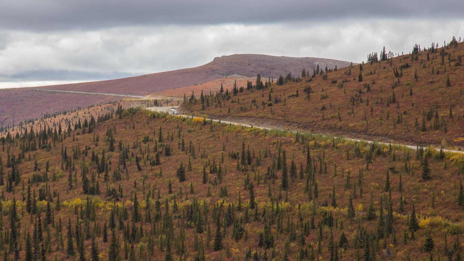 Yukon D10-41.jpg