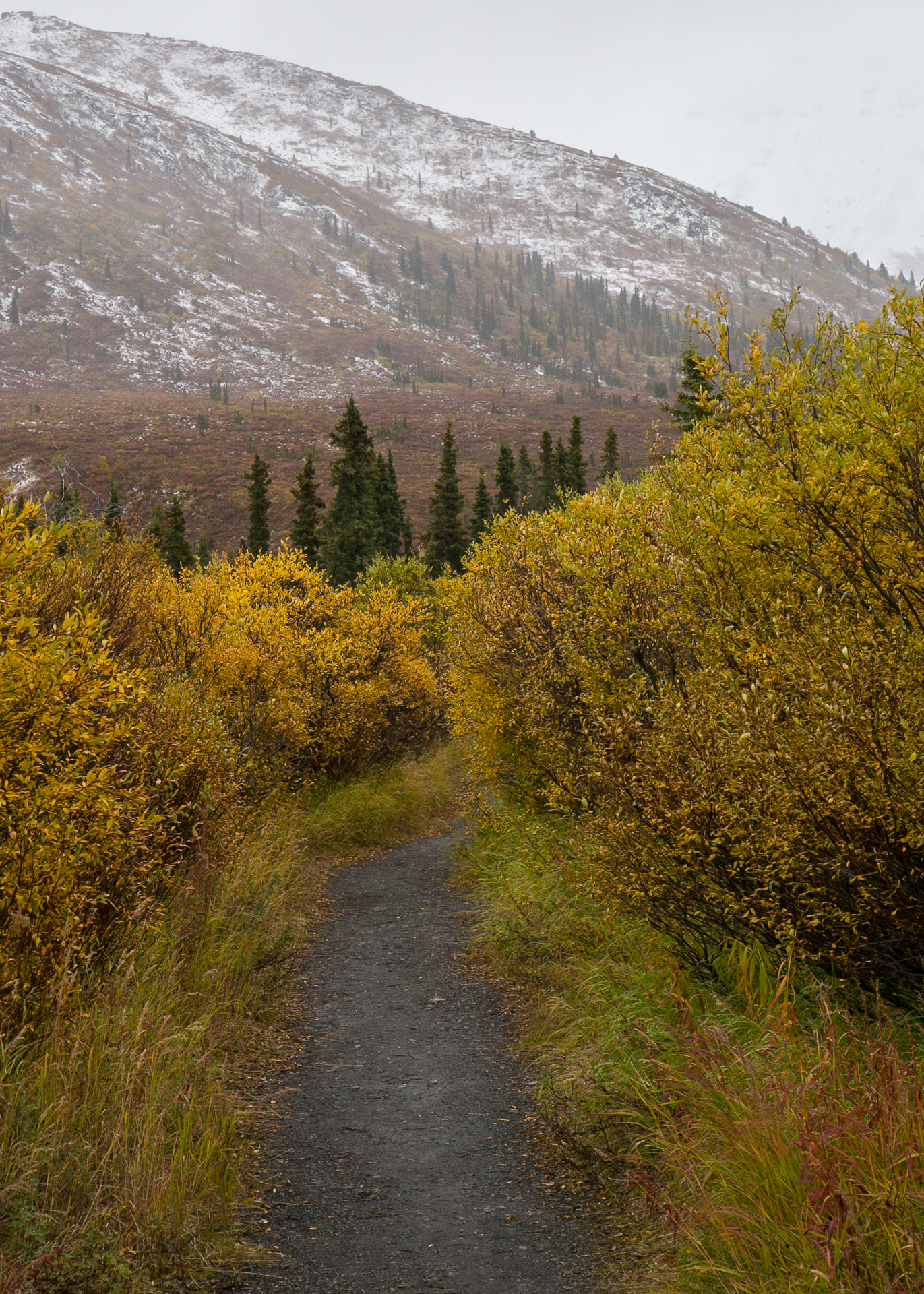 The start of our hike on the Klondike Trail.
