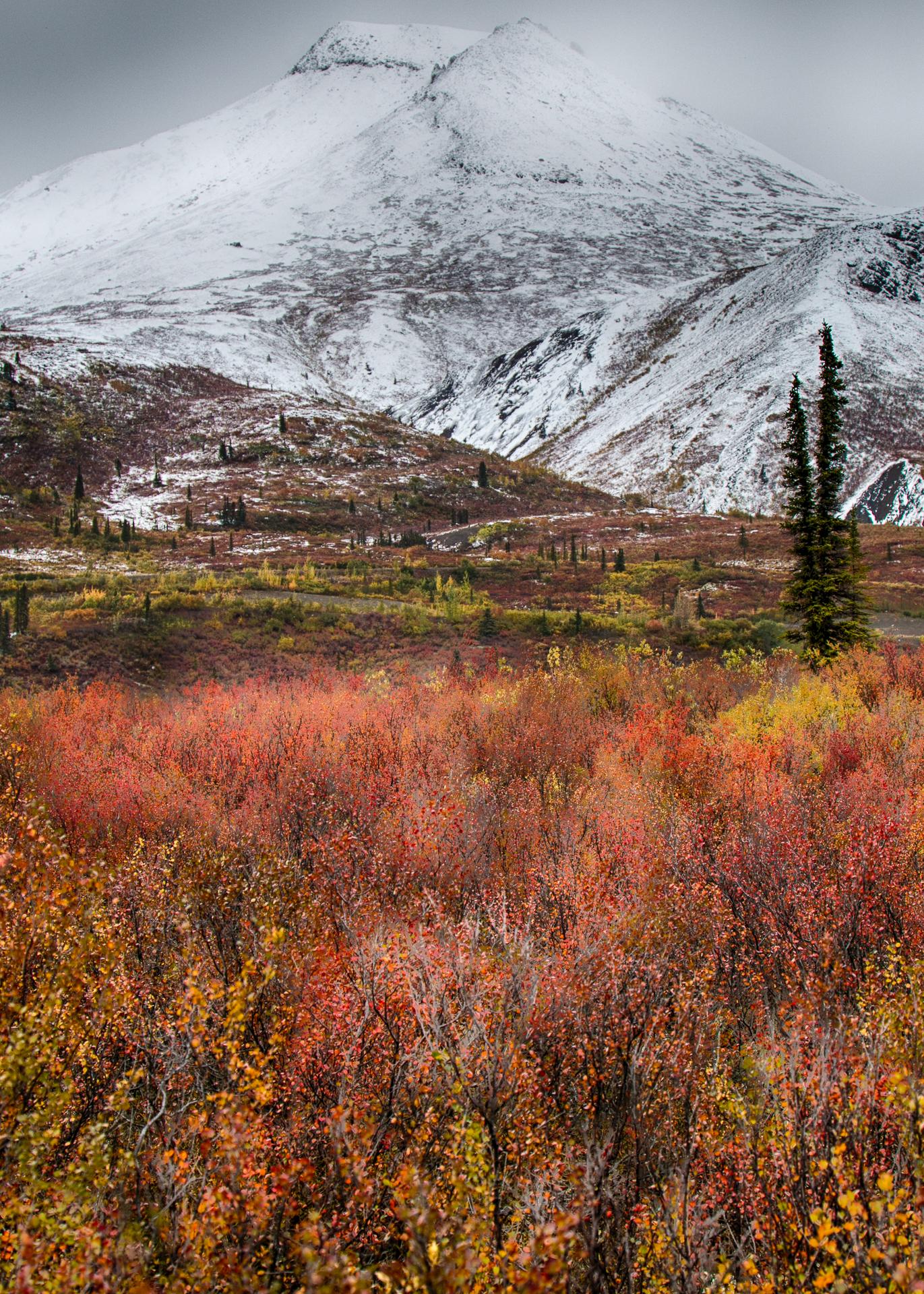 The fall colours were pretty amazing.