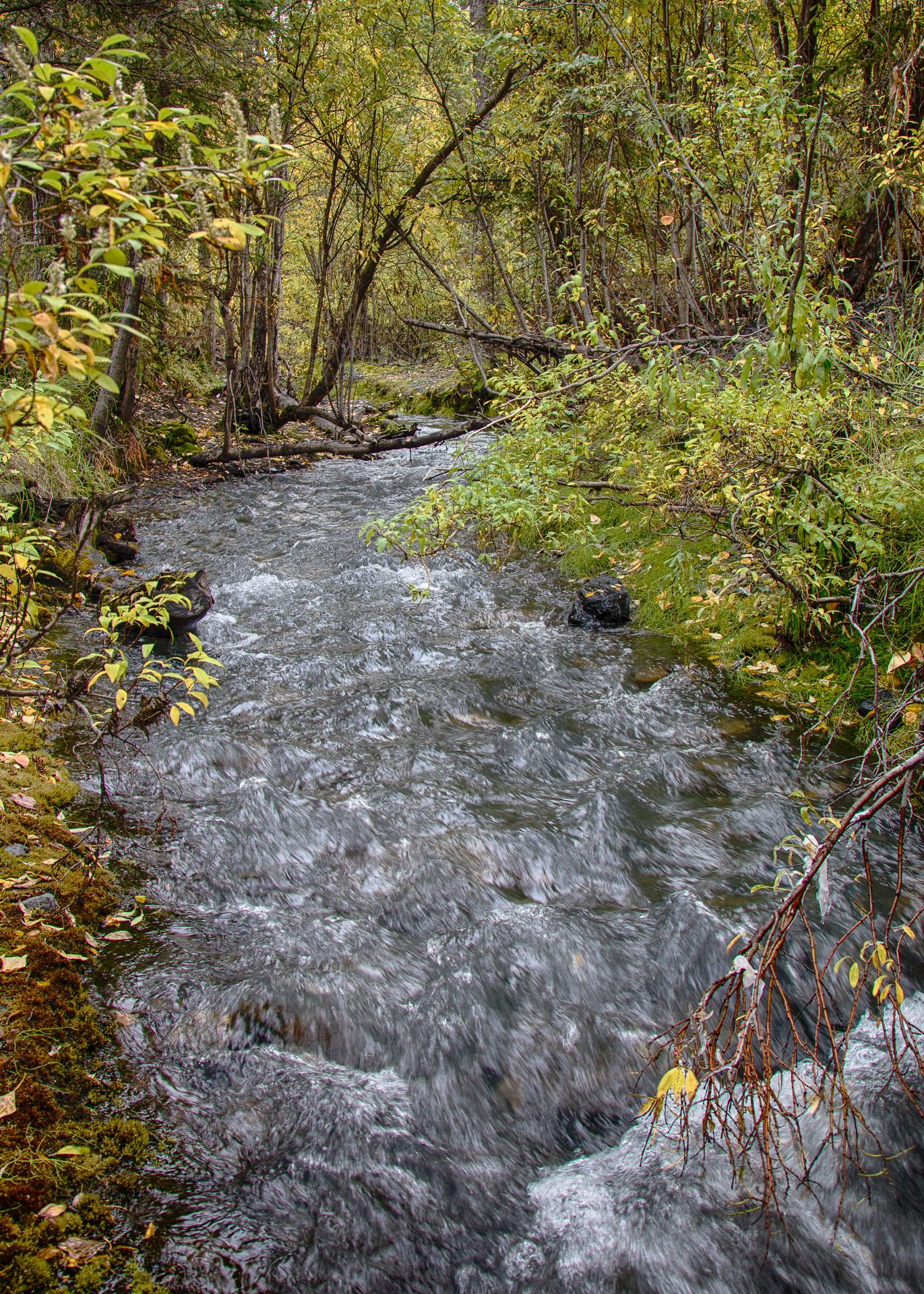 Yukon D11-35.jpg