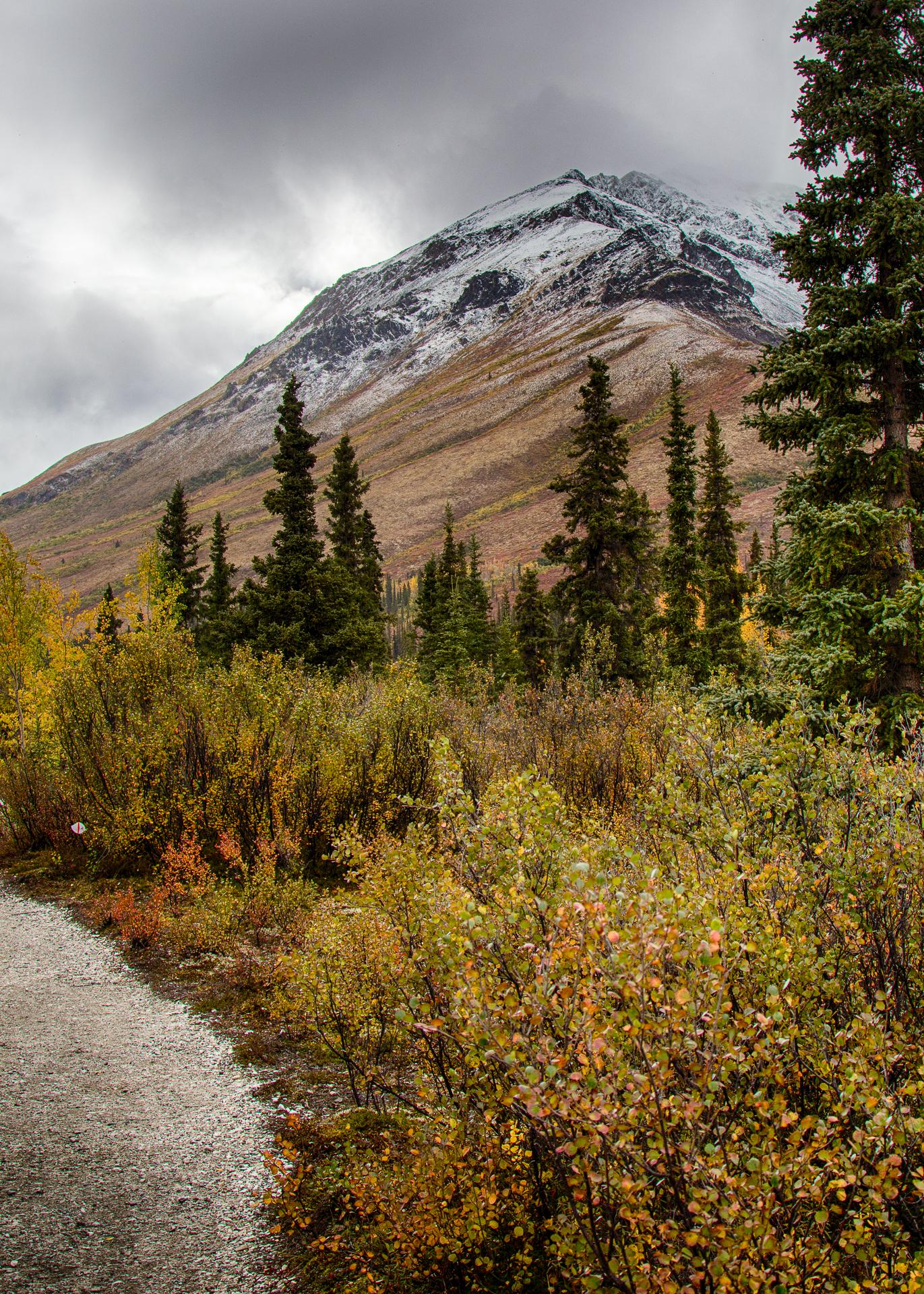 Yukon D11-38.jpg