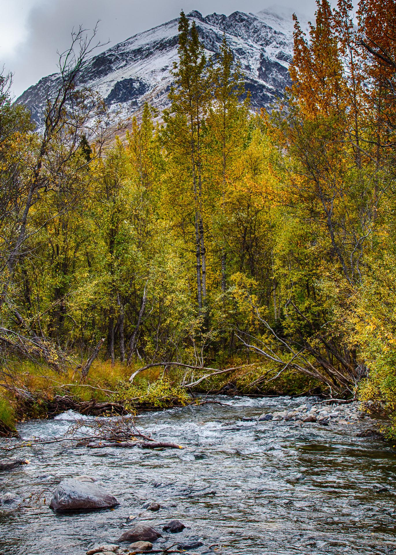 Yukon D11-33.jpg