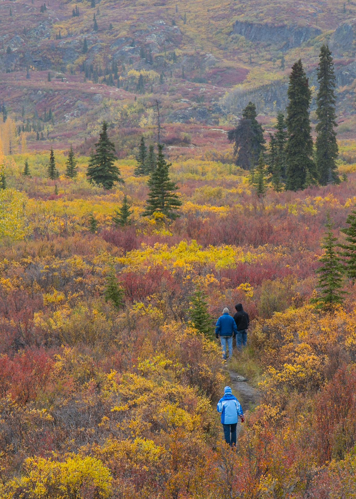 Yukon D11-62.jpg