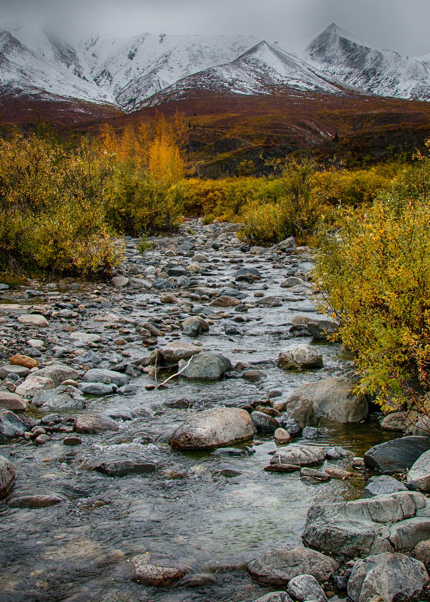 Yukon D11-67.jpg