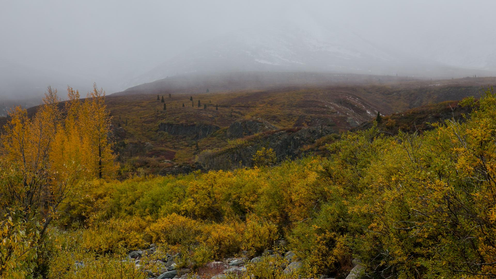 Yukon D11-69.jpg