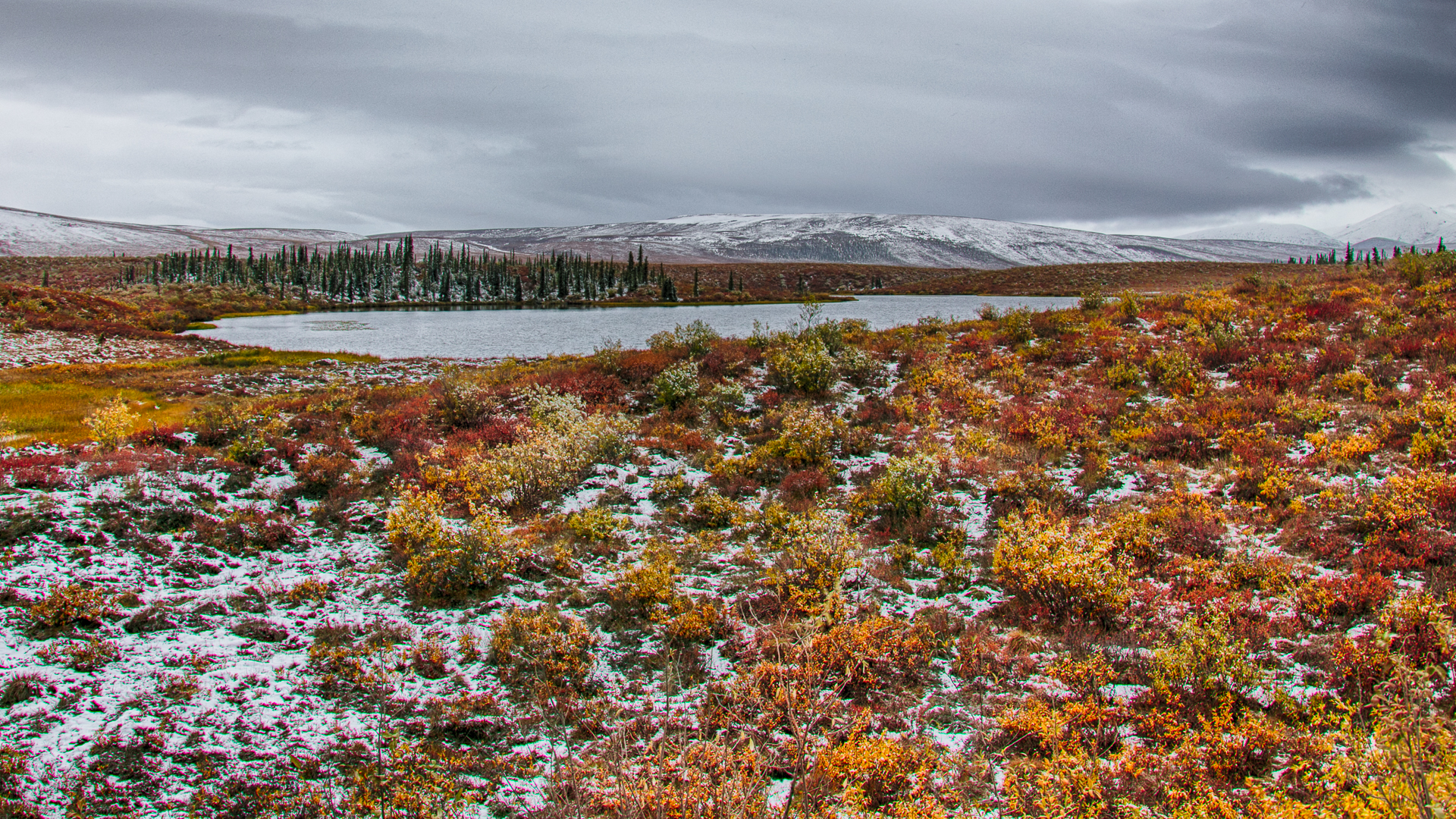 A bit of snow on the tundra.