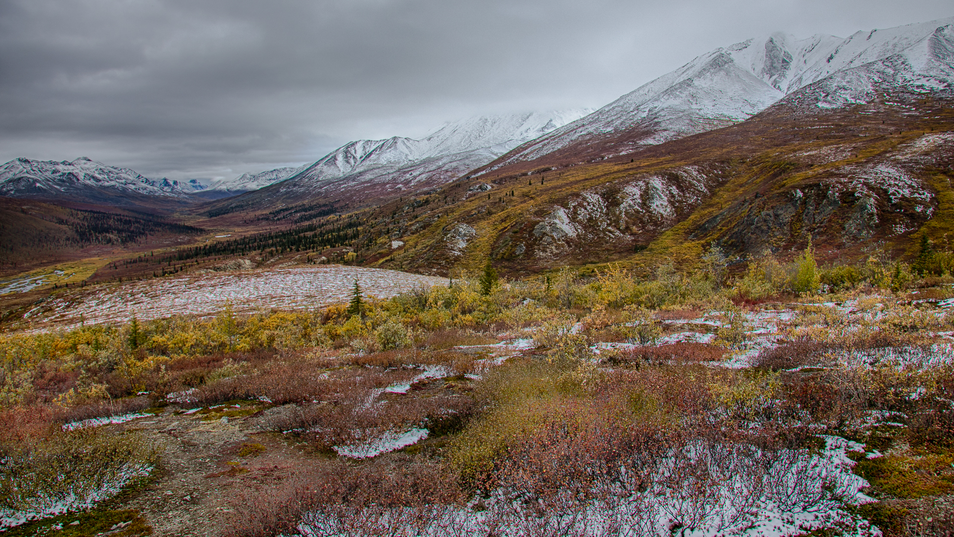 Yukon D13-10.jpg