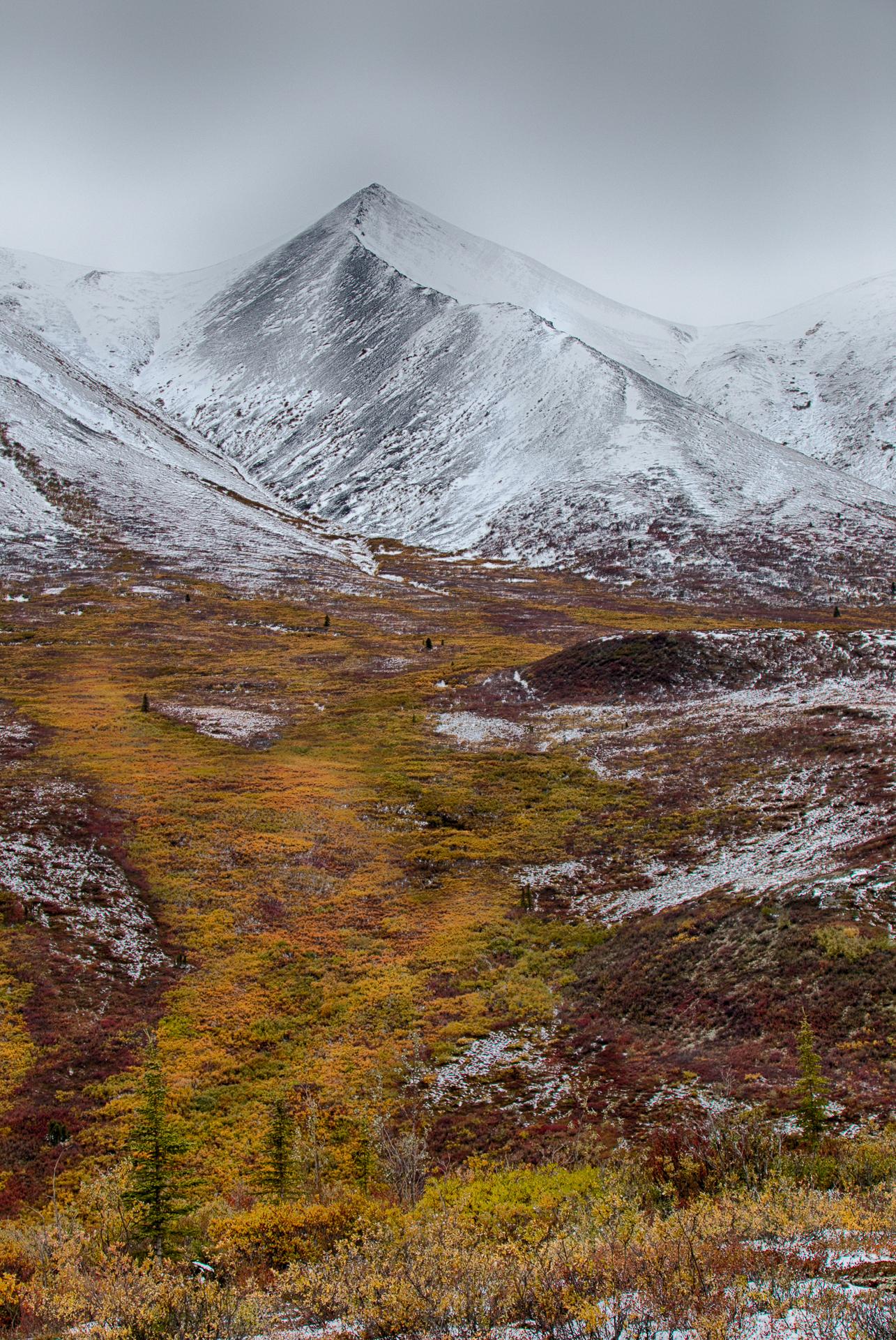 Yukon D13-13.jpg