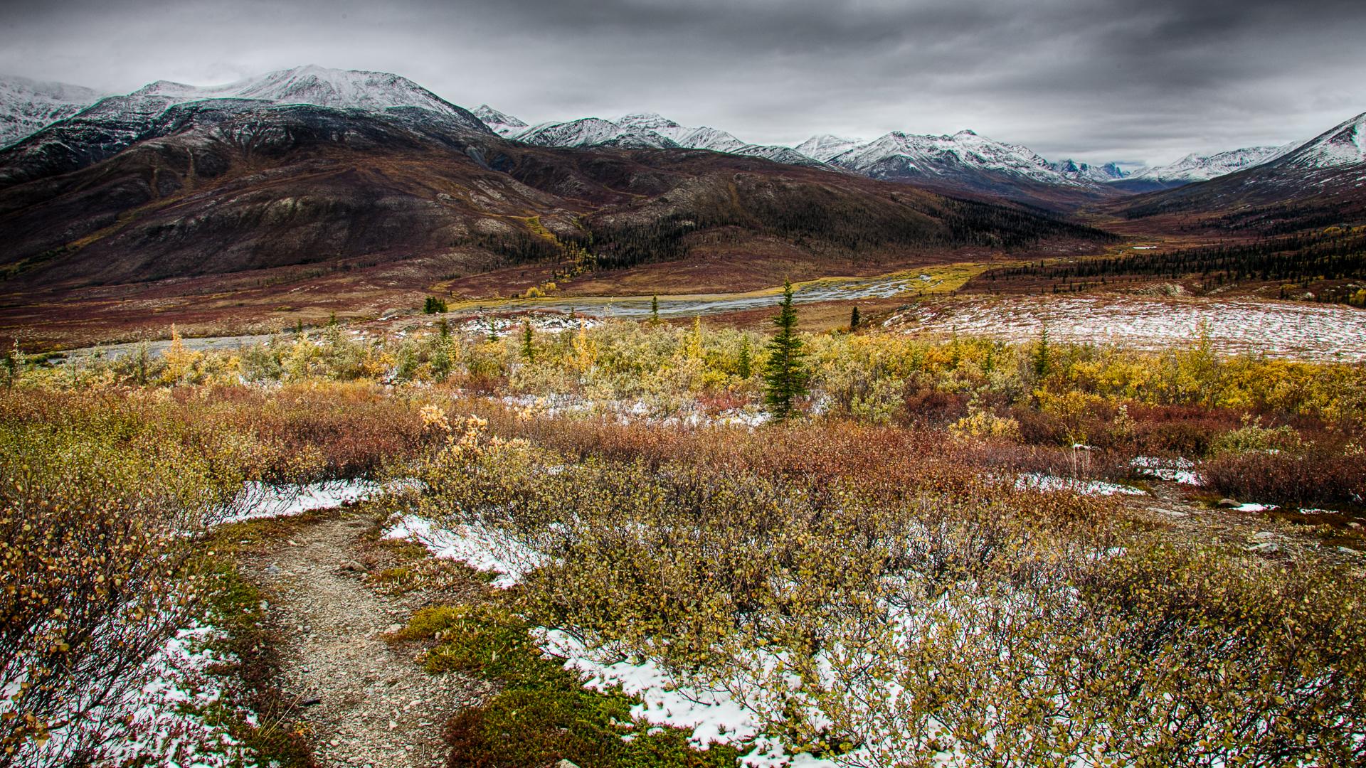 Yukon D13-15.jpg