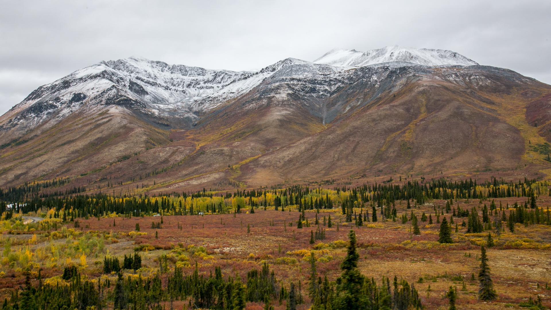 Yukon D13-28.jpg