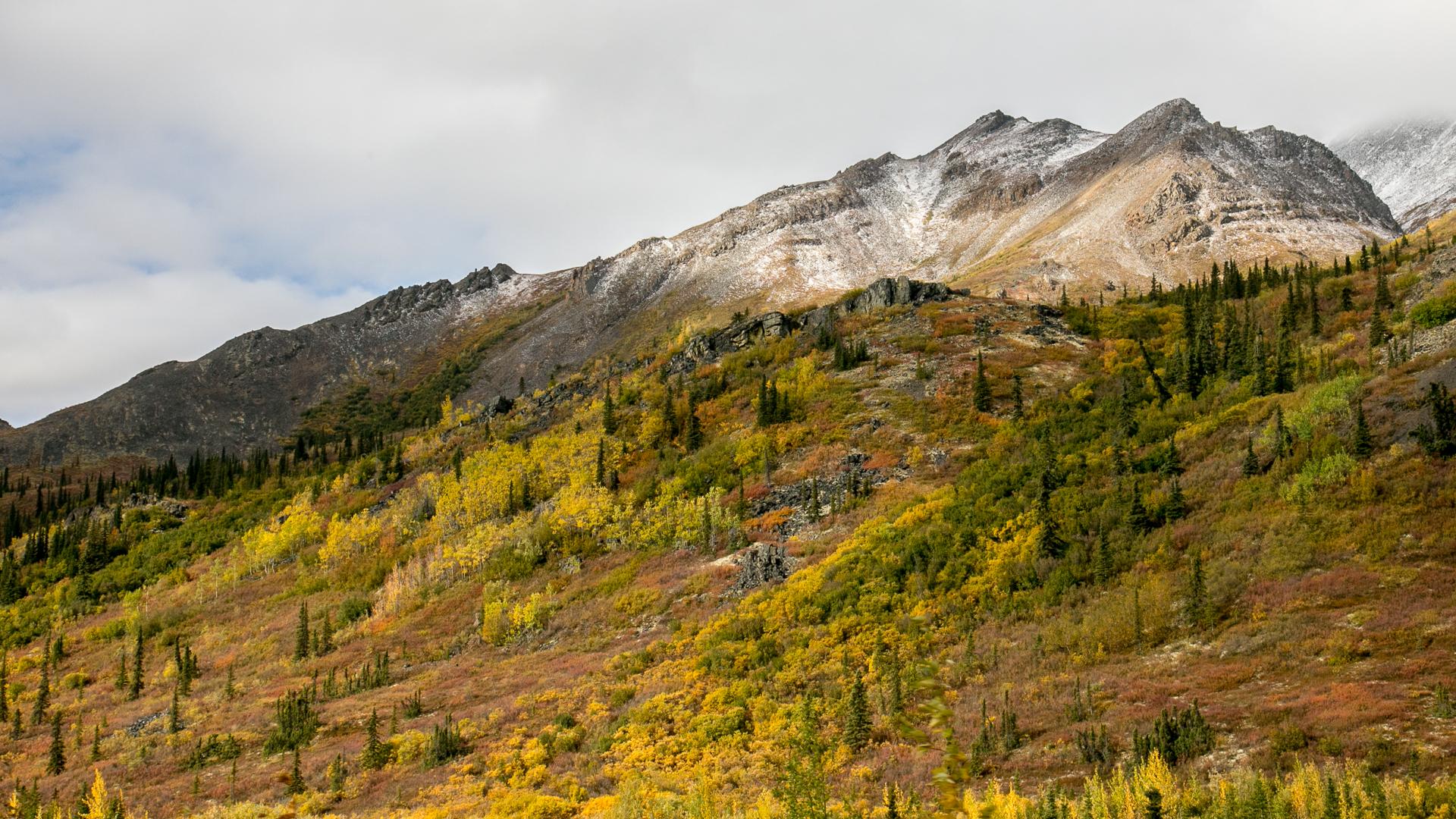 Yukon D13-34.jpg