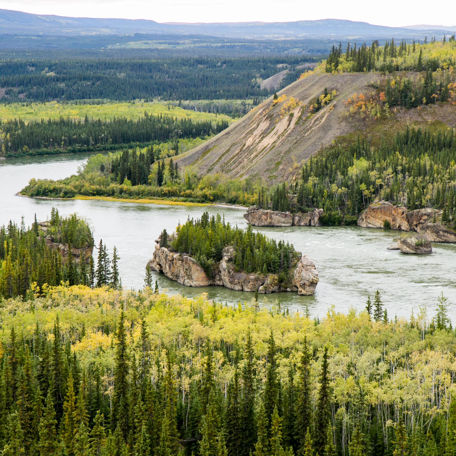 Yukon D13-40.jpg