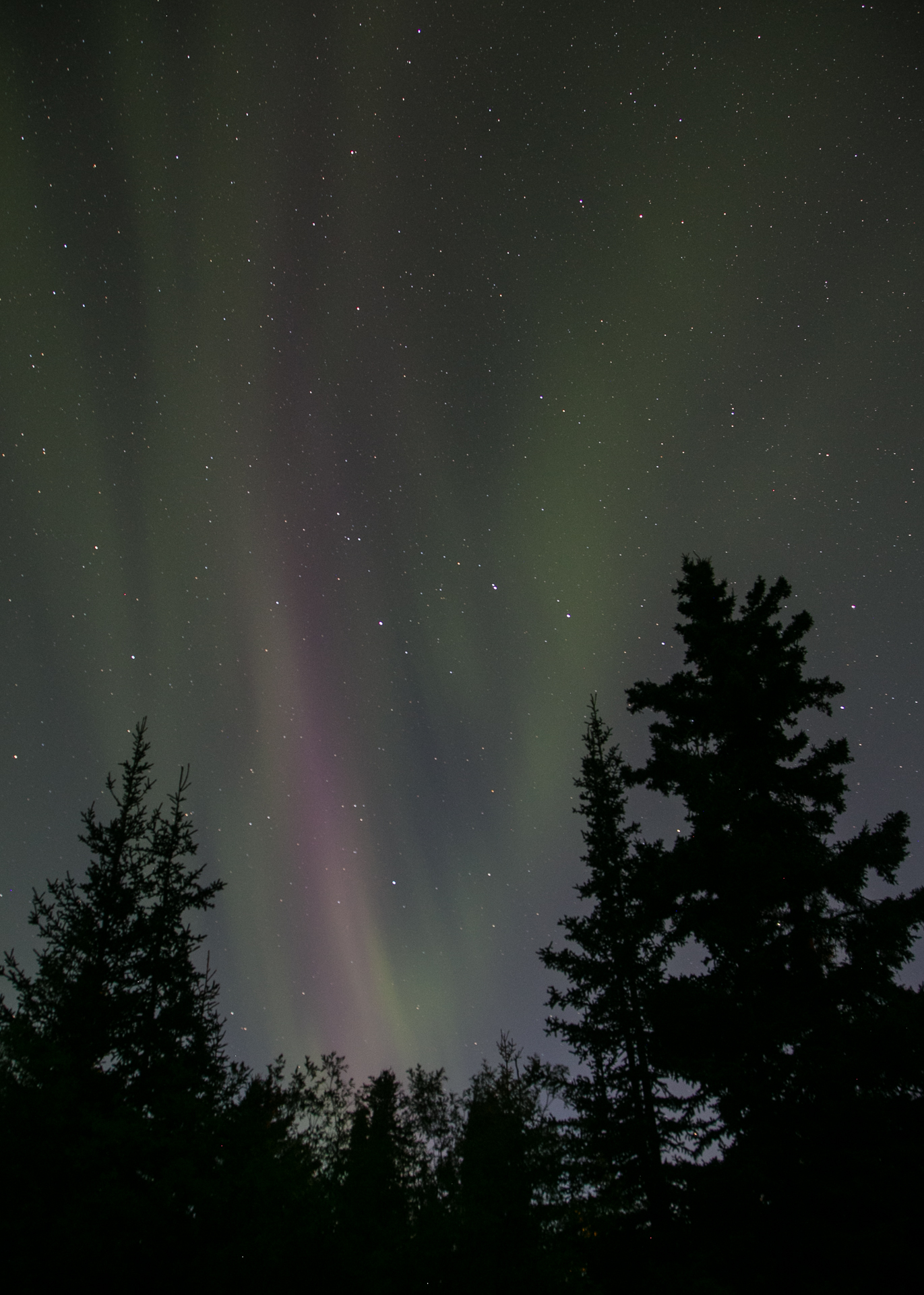 Some faint colour signaled the  start of the Northern Lights show.
